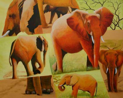 Van alle kanten olifanten